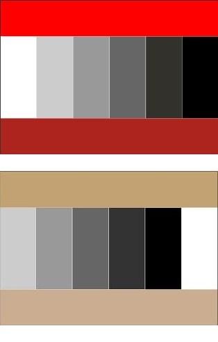 Какие цвета сочетаются с белым